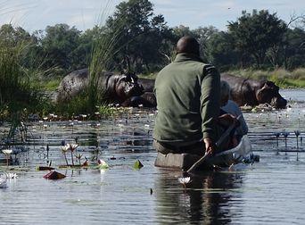 Rondreis Namibie en Botswana, Okavango