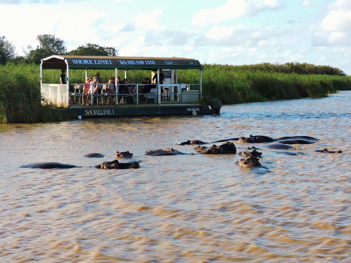 Walvissen en wijngaarden in Hermanus | AmbianceTravel