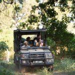 Rondreis Zuid-Afrika Sefapane