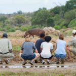 Rondreis Zuid-Afrika met kinderen