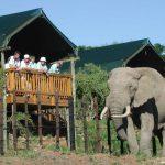 Rondreis Zuid-Afrika Addo Rest Camp