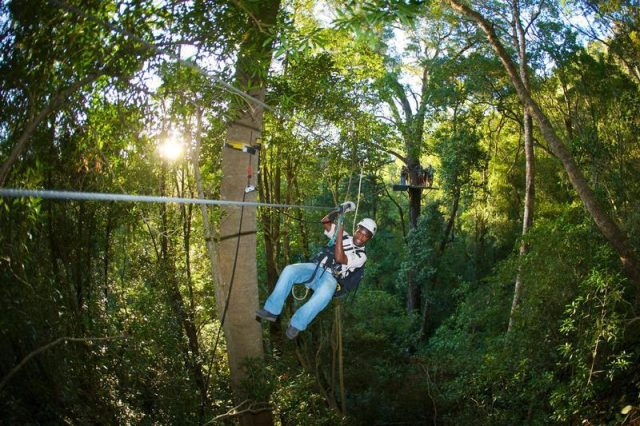 Rondreis Zuid-Afrika Canopy tour Tsitsikamma